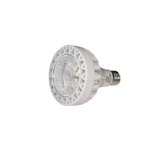 火炬版生鲜灯 -帕灯30W 15° 白色 2700K