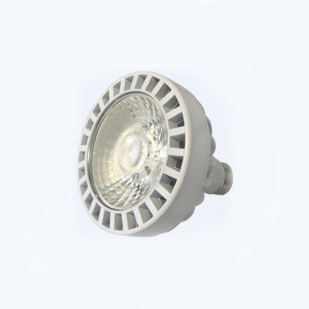火炬版生鮮燈-帕燈30W 36° 3000K